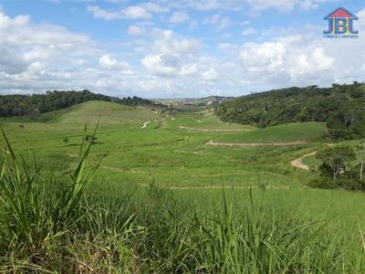 Fazendas À Venda Em São Luis Do Quitunde/al - Compre O Seu Fazendas Aqui! - 1406345