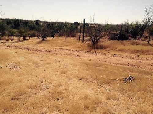 Terreno En San Pedro, Baja California Sur.