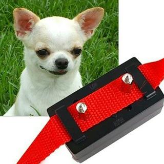 Accesorio Anti Ladrido, Adiestramiento Perros