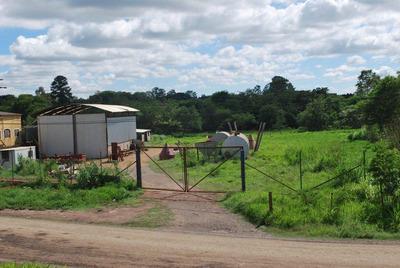 Terreno Com Galpão - Proximo Da Rodovia - Não Aceito Permuta
