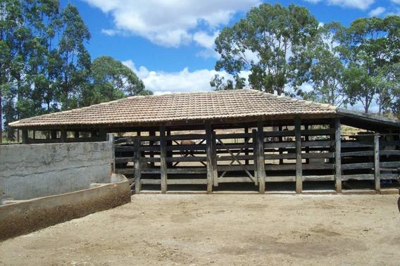 Fazenda Pecuária - 98 Hectares - Felixlândia (mg) - 1867