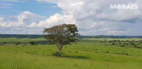 Imagem 1 de 26 de Fazenda Rural À Venda, Zona Rural, Garça. - Fa0003