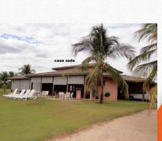 Fazenda Dupla Aptidão Em Jussara Goiás