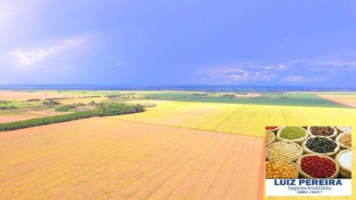 Fazenda À Venda Em Dourados - Ms - De 275 Hectares (agricultura) - 1656
