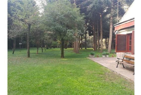 Campo De Tres Hectareas Con Dos Casas