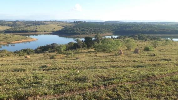 Vendo Fazenda Nas Margens Do Lago De Furnas/mg