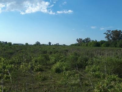 Campos Terreno En Ibarlucea Inversionista