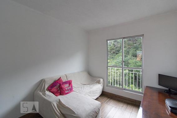 Apartamento Para Aluguel - Parque Da Fonte, 3 Quartos, 65 - 893023010