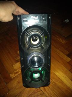 Parlante Portátil Global + Micrófono Con Luces Lsd