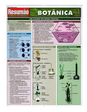 Livro - Resumão Botânica - Brooks