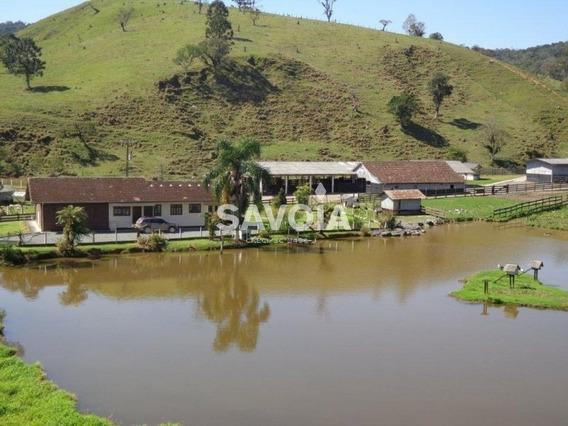 Fazenda Com 474 Hectares Em Rio Dos Cedros, Sc - 356