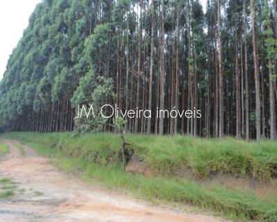 Sitio A Venda São Miguel Arcanjo Sp - St00002 - 32778211