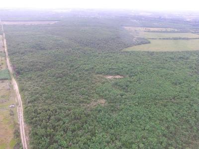 Terreno En Mesa De La Anacua
