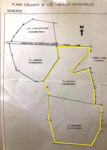Imagen 1 de 15 de Terrenos En Venta 2 Predios Juntos. 13.93 Has. Pueblo, Tahmek, Yucatàn.