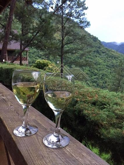 Coalición Vende En Mountain Garden Terrenos Jarabacoa