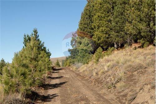 Remax Cordillera Vende Lotes En El Remanso