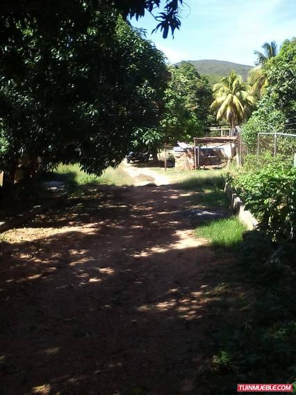 Granja En Venta Cría De Gallos En Cumaná Estado Sucre45***