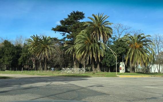 Excelente Lote Urbano, 25 De Mayo, Pcia. Buenos Aires