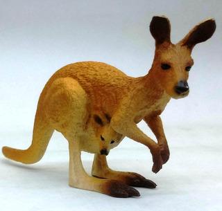 Mundo Animal National Geographic Nº 14 Canguro