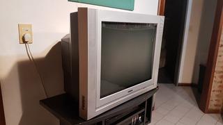 Tv 29 Ranser Con Pantalla Plana Y Control Remoto