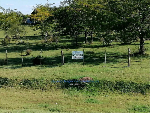 Campo, Canelones Sobre Ruta 5