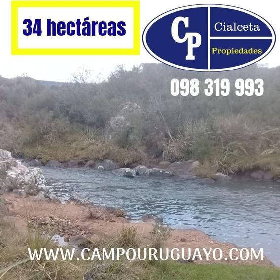 Campo De 34 Hectáreas Con Arroyo, Imperdible