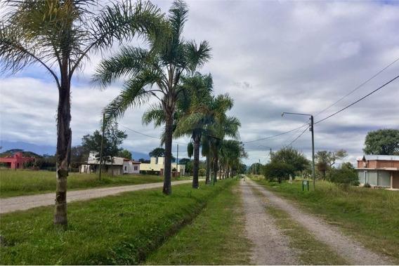 Re/max Noa Ii Vende Terrenos Country Las Delicias