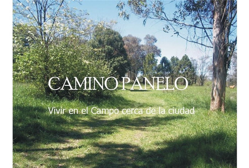 Loteo Camino Panelo - Venta De Terreno En Cañuelas