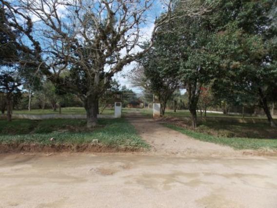 Sítio Em Belém Novo Com 3 Dormitórios - Mi14683