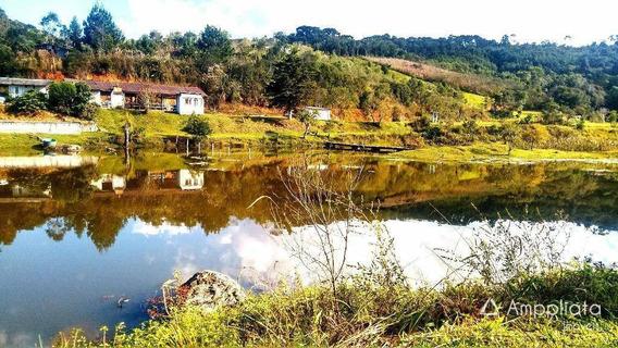 Chácara À Venda, 31000 M² Por R$ 500.000,00 - Palmitalzinho - Quatro Barras/pr - Ch0044
