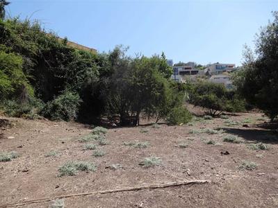 La Dehesa , Camino La Laguna , Parque De