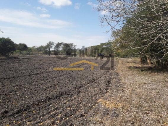 Rancho En Venta, Ejido Rio Tamiahua, Carr. Tampico-mante, Altamira, Tamps.