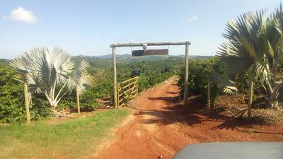 Sítio Com 2 Quartos Para Comprar No Zona Rural Em Nepomuceno/mg - Nep870