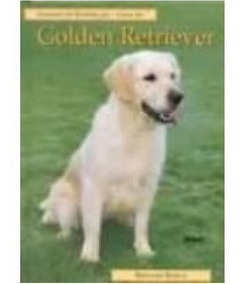 Animas De Estimação Guia Do Golden Retriever Bernard Bargh