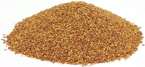 Semillas De Alfalfa 250 Gr. Para Germinados Importada