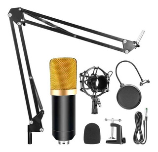 Kit Microfono Condenser Streaming Con Brazo Y Antipop Radio