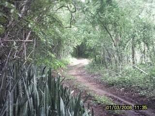 Finca En Venta En Valladolid Yucatan. 45 Hectareas Con Instalaciones Ecotur.