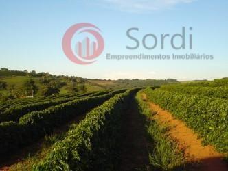 Fazenda Rural À Venda, Zona Rural, Elói Mendes. - Fa0059