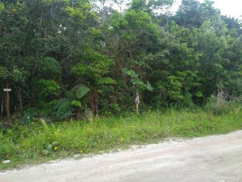 Imagem 1 de 3 de Terreno No Litoral Sul, Com 1200 M², Em Itanhaém-sp | 7607