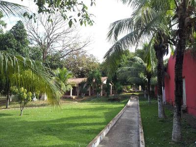 Casa Terrea - 18734
