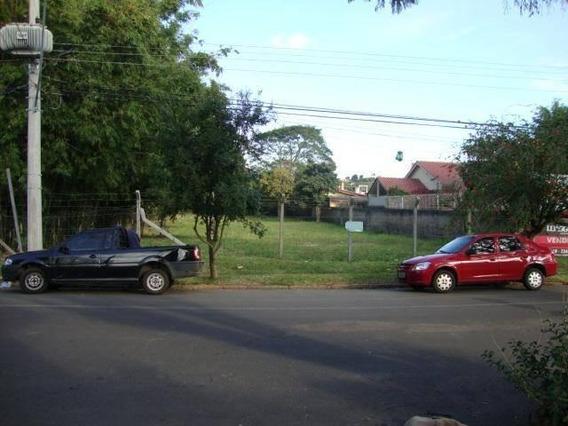 Terreno Comercial Para Locação, Camaquã, Porto Alegre. - Te0589