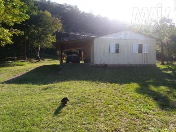 Chácara Para Venda Em Santo Antônio Da Patrulha, Aldeia Velha, 3 Dormitórios, 1 Banheiro, 2 Vagas - Cwvcr006_2-1029861