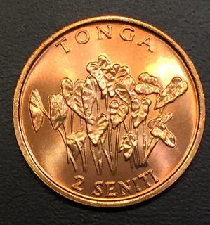 Ton004 Moneda Tonga 2 Seniti 1981 Unc-bu Ayff