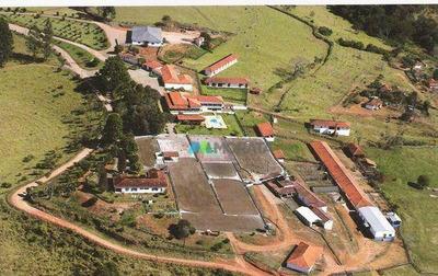 Fazenda Para Café E Leite - 770 Ha - Região Carmo De Minas (mg) - Codigo: Fa0099 - Fa0099