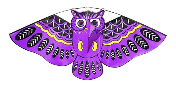 Pipa X 20 Polegadas Colorido Desenho Animado Coruja Voador P