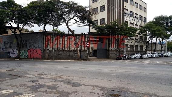 Galpao Em Cambuci - São Paulo, Sp - 337953