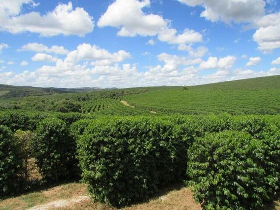 Fazenda Com 640 Ha - São Tiago - Mg - Fazenda Com Café - Produzindo 5000 Sc - 43