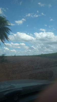 Fazenda A Venda Em Naviraí - Ms (pecuária) - 950