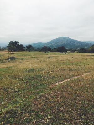 Hermoso Terreno Agricola En Valle Alegre