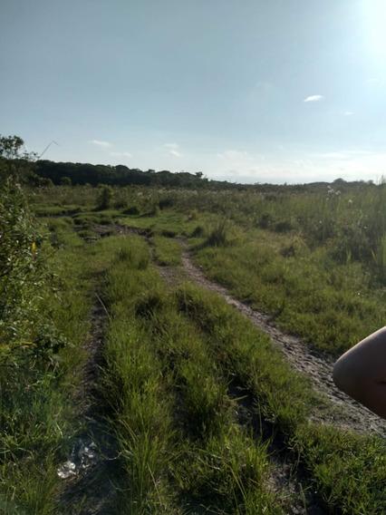 Terreno Escriturado No Gaivota, Em Itanhaém,1000 Mts Do Mar